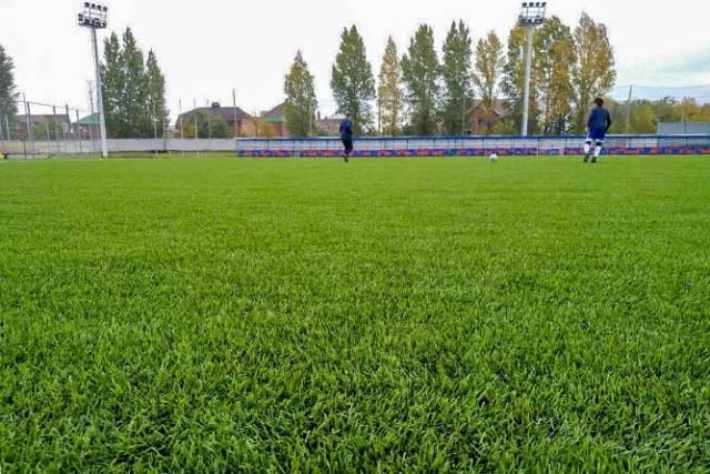Футбольный газон.