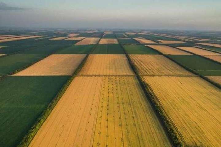Закон об открытии рынка земли приняли еще весной 2020 года - Земля подорожает, не спешите продавать: сколько дадут за гектар после открытия рынка