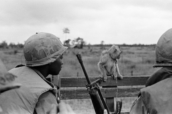 Фото: 14 - Вьетнамская война: потери и находки - Главком