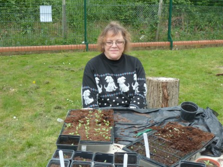 Theresa at the potting table
