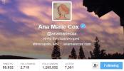 Ana Marie Cox Twitter Bio
