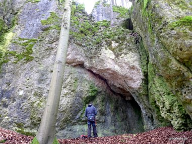 Wohlmutshüller Weg (7+)
