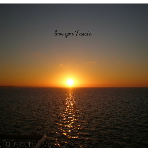 love you Tassie picture