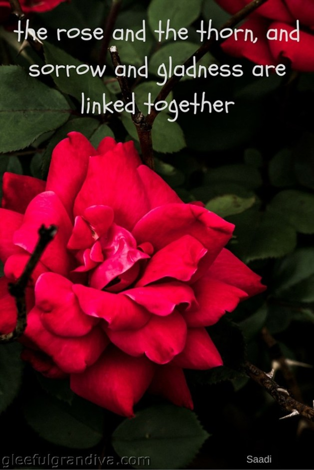 the rose and the thon, and sorow and gladness, are linked togethe5