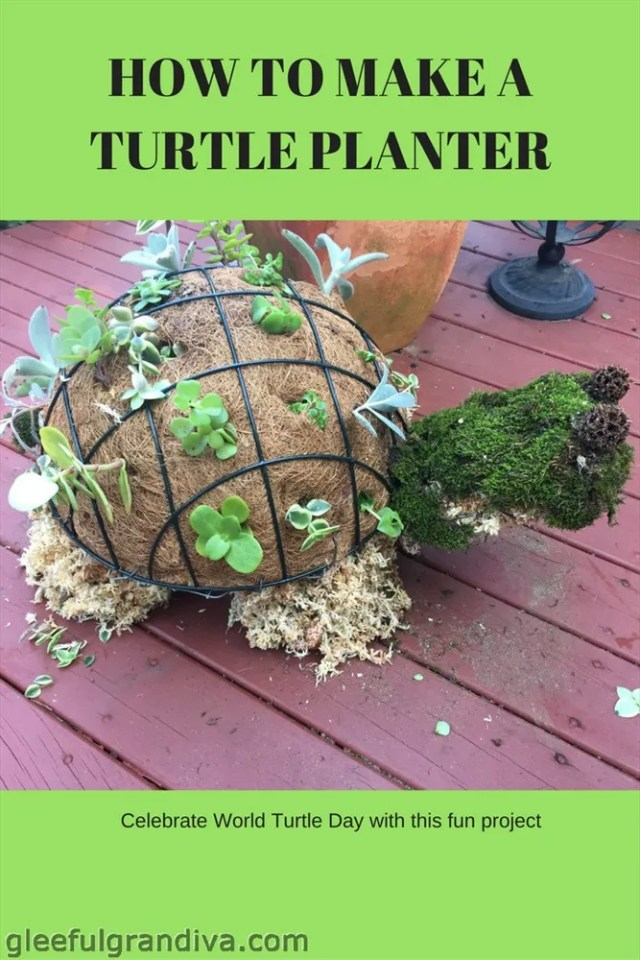 how to make a turtle planter picture