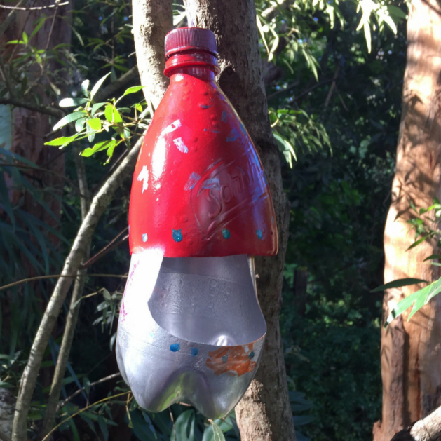plastic bottle bird feeder picture