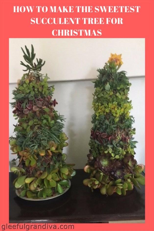 succulent tree picture
