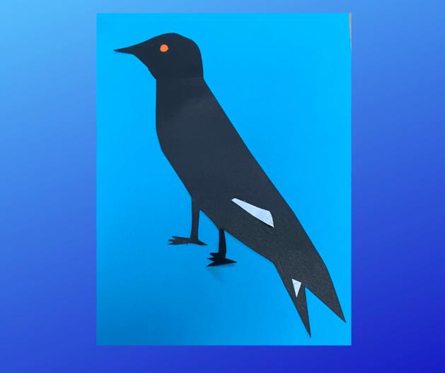 Aussie birds crafts picture