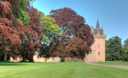 Trees in full leaf in front of the pink stone built Brodie Castle