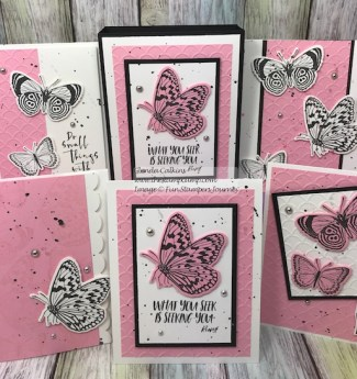 Small Things, Fun Stampers Journey, Box of Cards, glendasblog