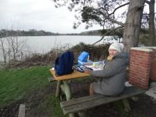 Pleasant picnic