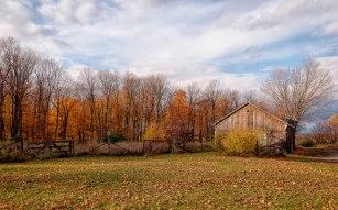 the-small-barn
