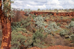 Dales Gorge, Karijini, Western Australia.