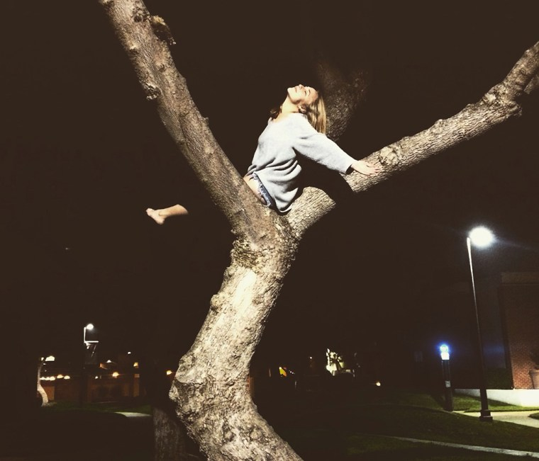 Marina Barnes basking high in a tree on the CSULB campus