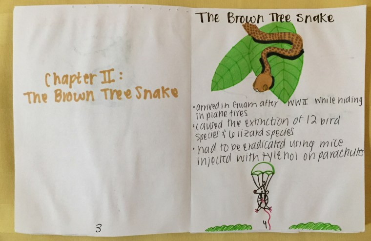 a spread from a zine discussing The Brown Tree Snake