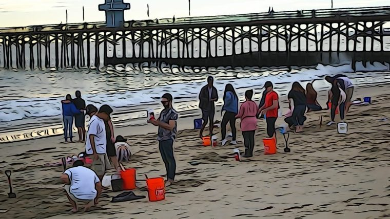 Wide shot of many students on the beach at the Seal Beach Pier working on plaster casting projects