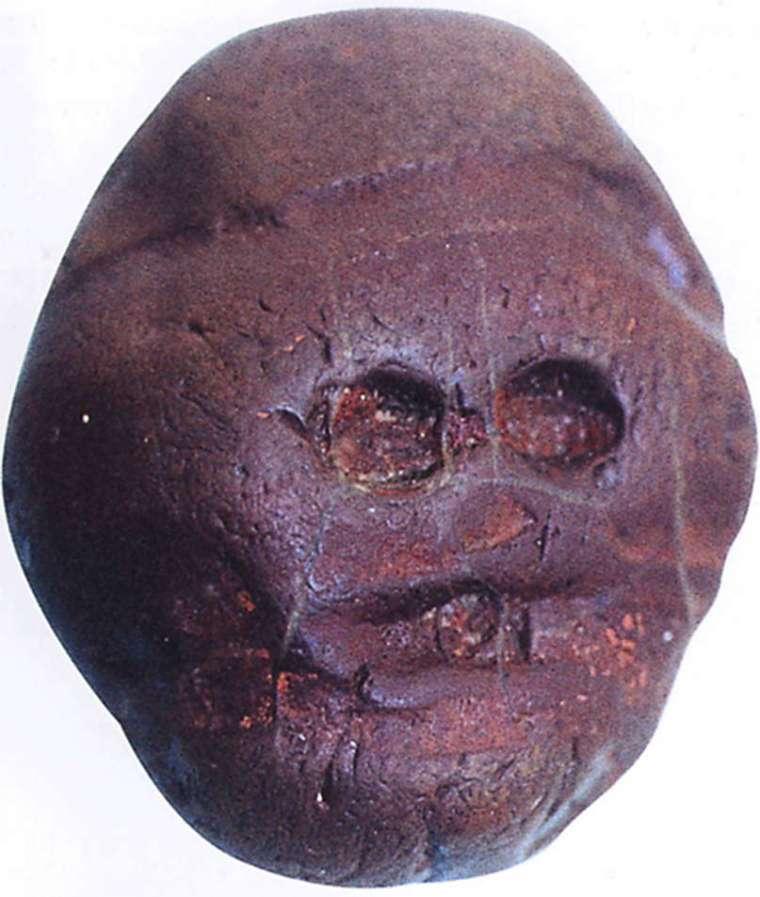 The Makapansgat Pebble or Water-Worn Pebble, Australopithecus africanus, 3 mya