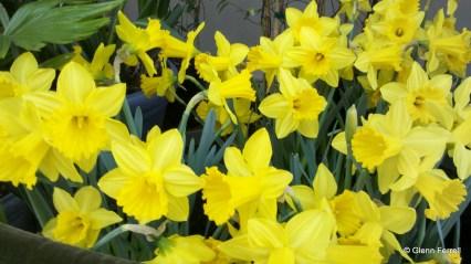 2011-03-19_15-02-53_866