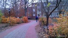 2011-11-17_16-16-33_963