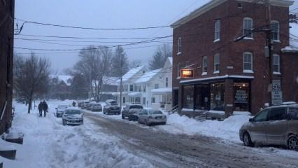 Snowy Elm, Waterbury, VT