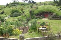 Les travaux du jardin sont en cours