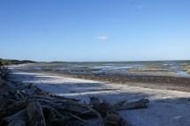 Farewell spit à l'extrémité Nord de l'île du Sud