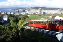 Wellington depuis les hauteurs du jardin botanique