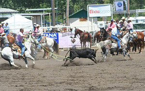 roping-action-4