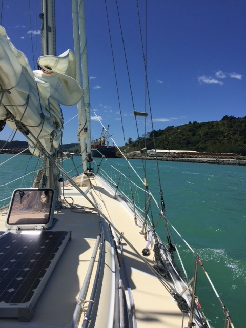 coming in to Gisborne