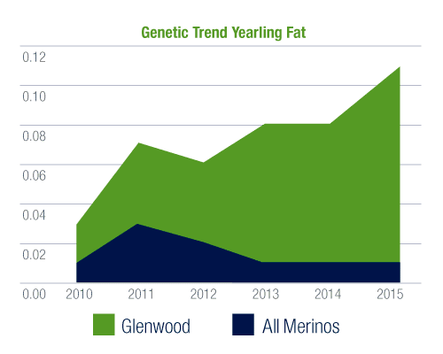 Glenwood Merinos Yearling Fat graph
