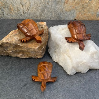 Thuya Wood SeaTurtles