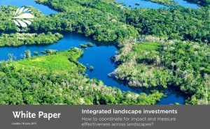 Integrated landscape investments: How to coordinate for impact and measure effectiveness across landscapes?