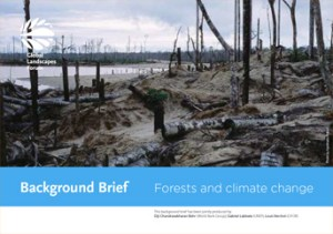 Background Brief – Forests and climate change