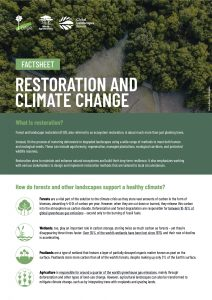 Restoration and Climate Change