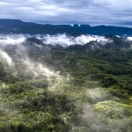 Hydrogen trains, a vaccine for malaria and the powerful new coalition seeking to save tropical forests