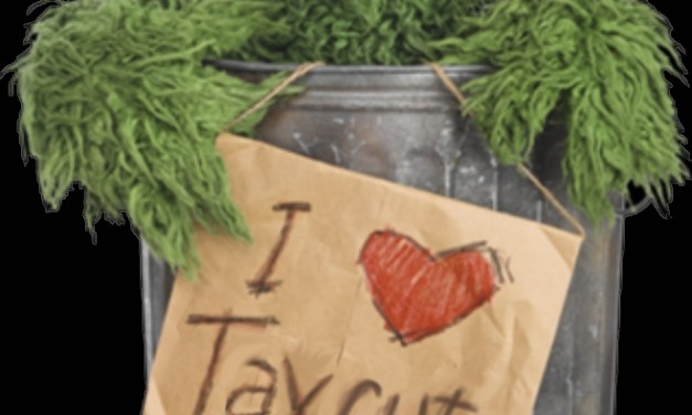 Musings from the Trash Can: Random Thoughts from A Muppet