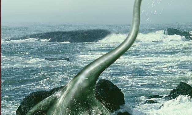 SEA SMITH FRIDAY NIGHT FUN. BY FUN, MEAN…