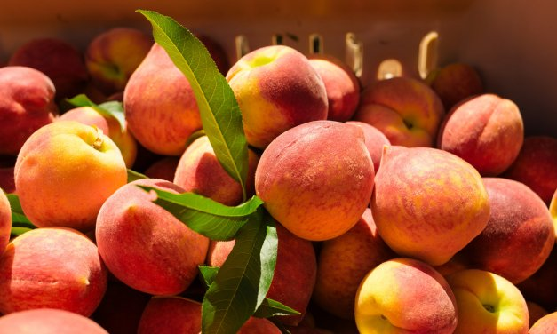 Peach Pie Edition of the Sunday Night Open Post