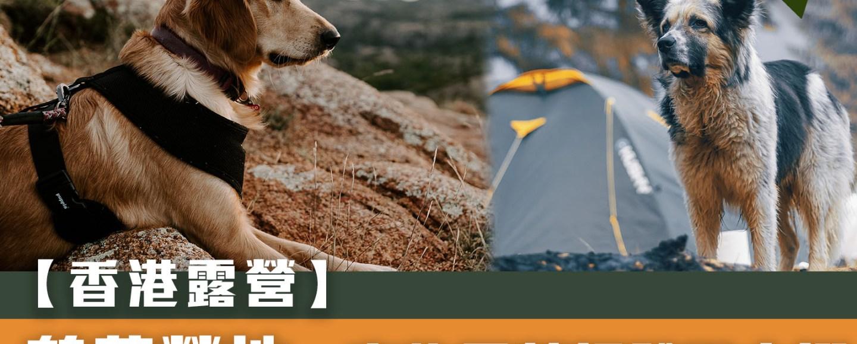 【露營地點】鶴藪營地 - 寵物露營初體驗之選