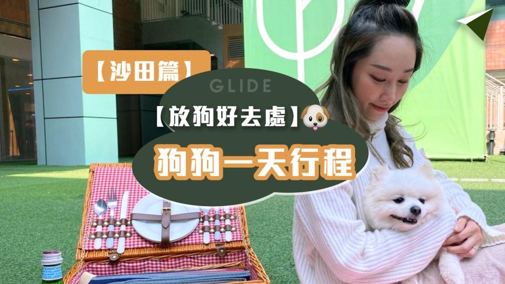 【狗狗一日遊 沙田篇】狗狗餐廳 + 狗公園一天行程