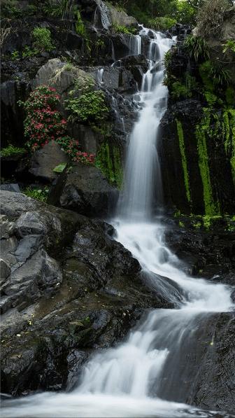 蓮苑台瀑布