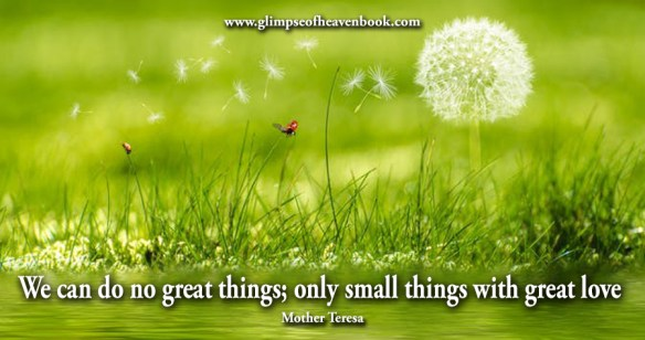 We can do no great things; only small things with great love Mother Teresa