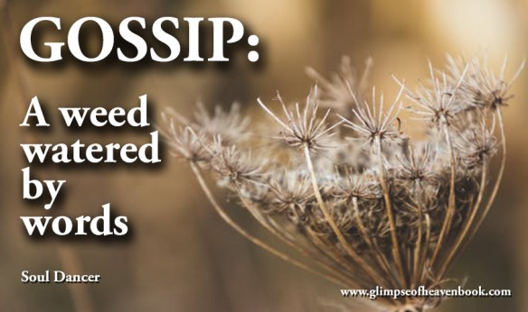 Gossip: A weed watered by words Soul Dancer