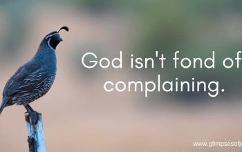 God Isn't Fond of Complaining