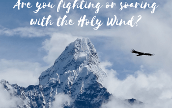 Are You Fighting or Soaring with the Holy Wind?