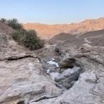 Dahir, Fujairah
