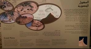 Exhibit about gravel plains at Sharjah Natural History and Botanical Museum, Sharjah Desert Park