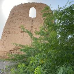Old mud watchtower at Khatt