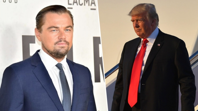 Leonardo DiCaprio Went All Savage On Donald Trump With This Comment And People Are Loving It! via Bradman62
