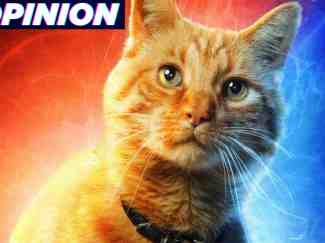 Captain Marvel's cat